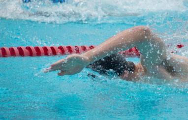 Open de natation 2019