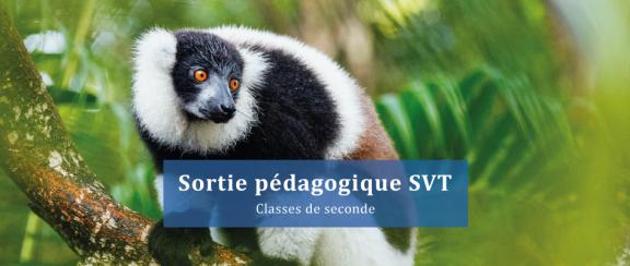 sortie-pédag-svt-lemurs-park