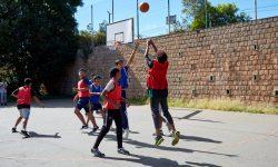 LFT-sports (3)