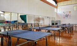 LFT-sports (6)